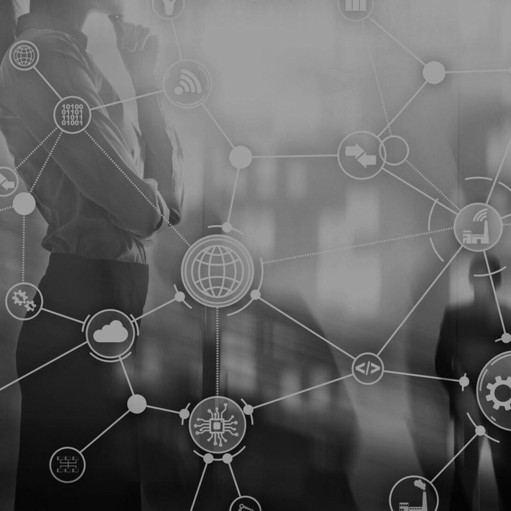 Netzwerk- und Kooperationspartner